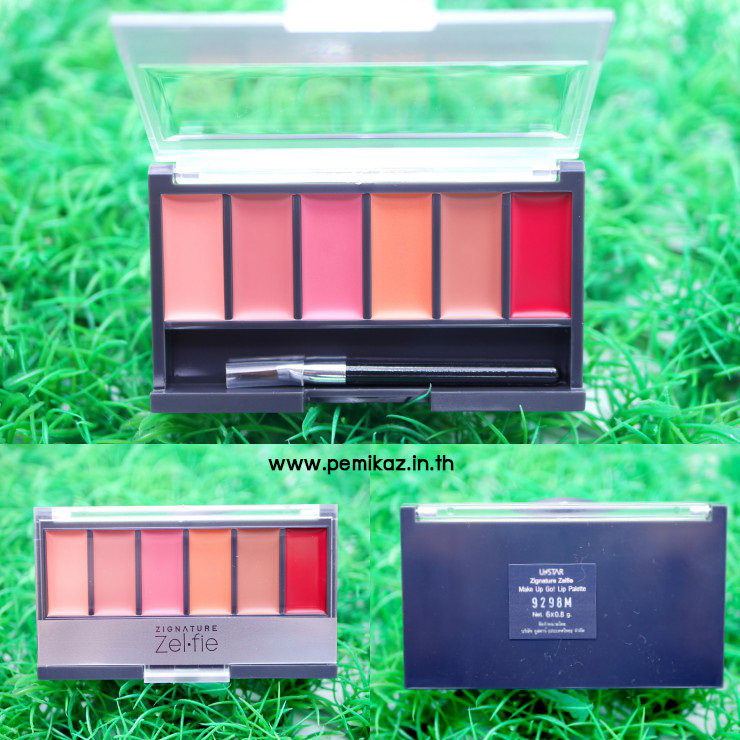 ustar-zignature-zelfie-make-up-go-lip-palette1