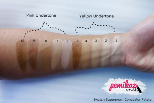 pemikaz supermom concealer palate - 3