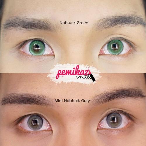 Pemikaz Dream Color1 -  Nobluck gray green 3