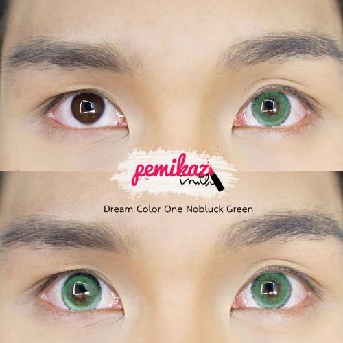 Pemikaz Dream Color1 - Nobluk Green - 1