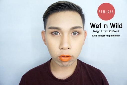 Wet-n-Wild--Mega-Last-Lip-Color-E976