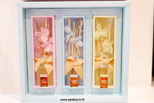 botinique-blooming-blossom-reed-diffuser-gift-set-1